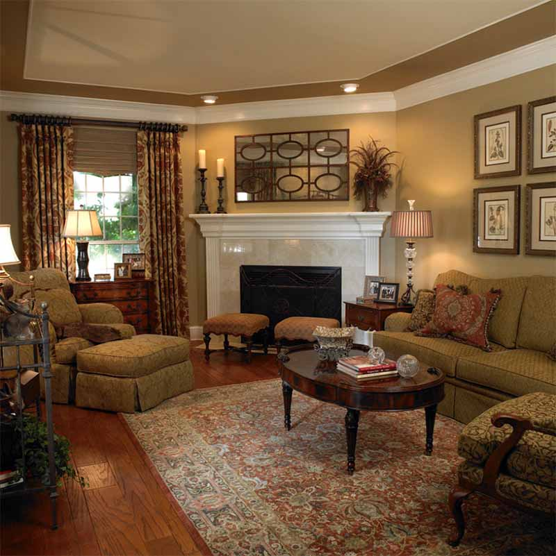 brown traditional living room example