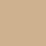 Sherwin Williams SW 7697 Safari, gold beige undertone, choosing the right exterior house color